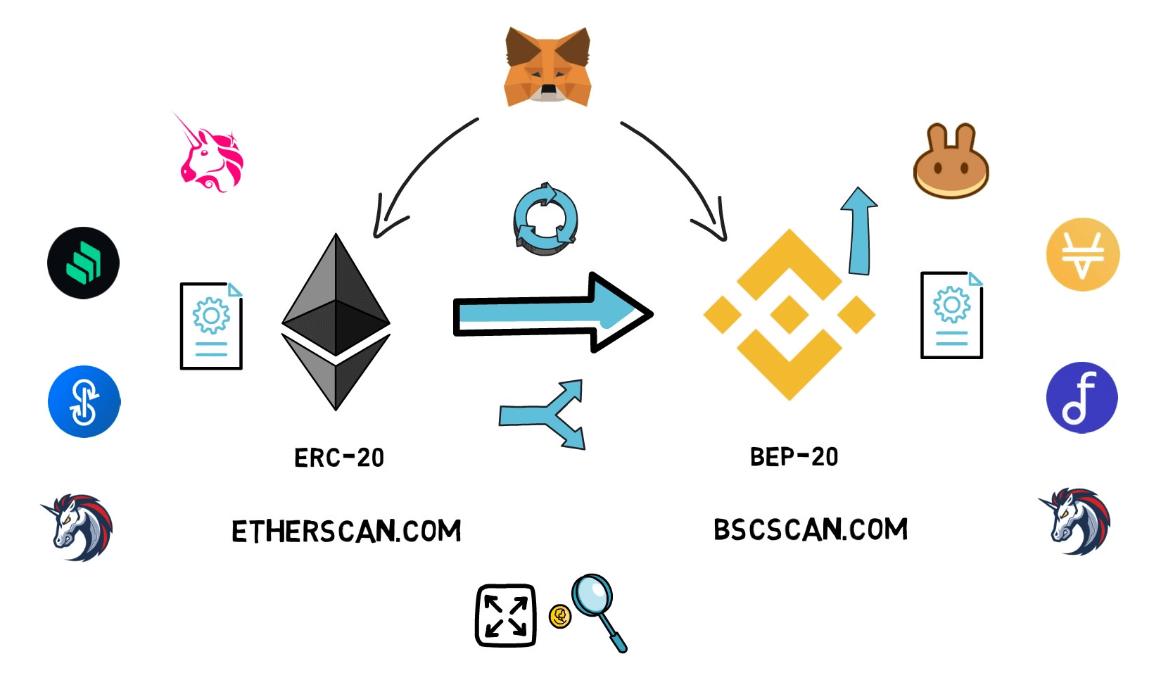 Infografika prikazuje tokene koji su utemeljeni na ERC-20 i BSC mrežama.